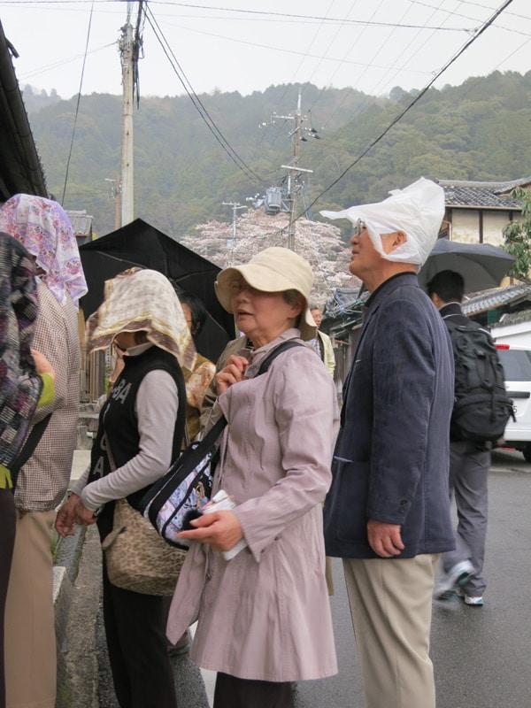 pluie sur Kyoto