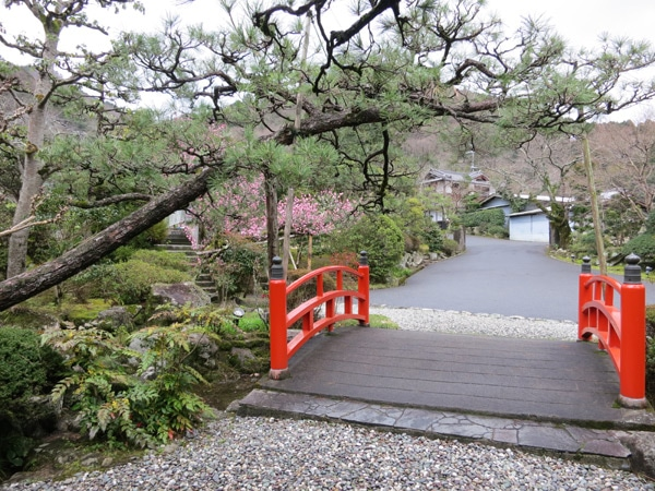 Amami – Escale entre Osaka et le Mont Koya