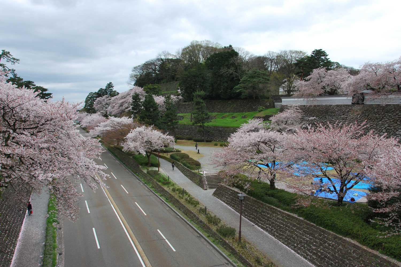 kanazawa-2016-chateau-arret-bus-kenrokuen.cerisiers
