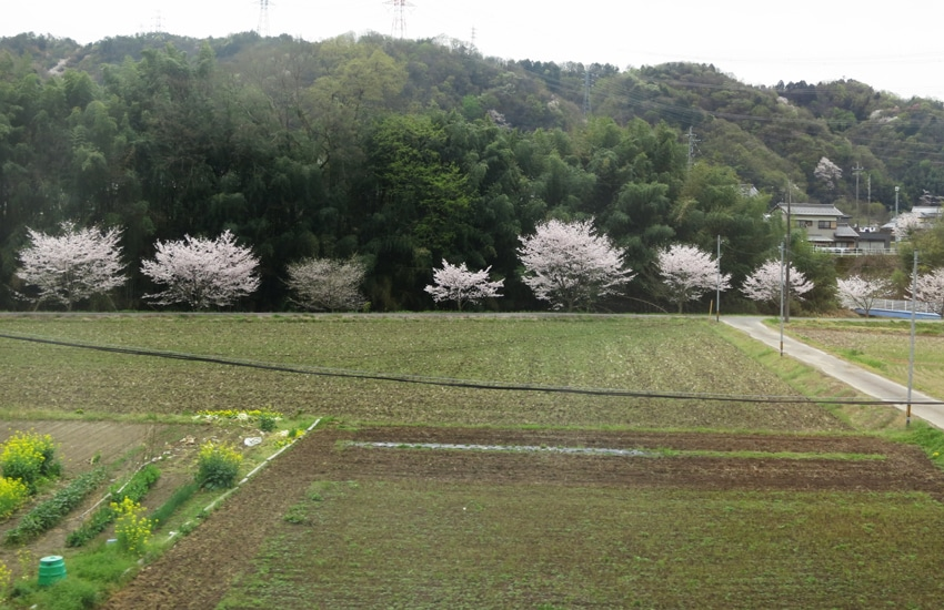 vue-train-nagoya-takayama.3-jpg