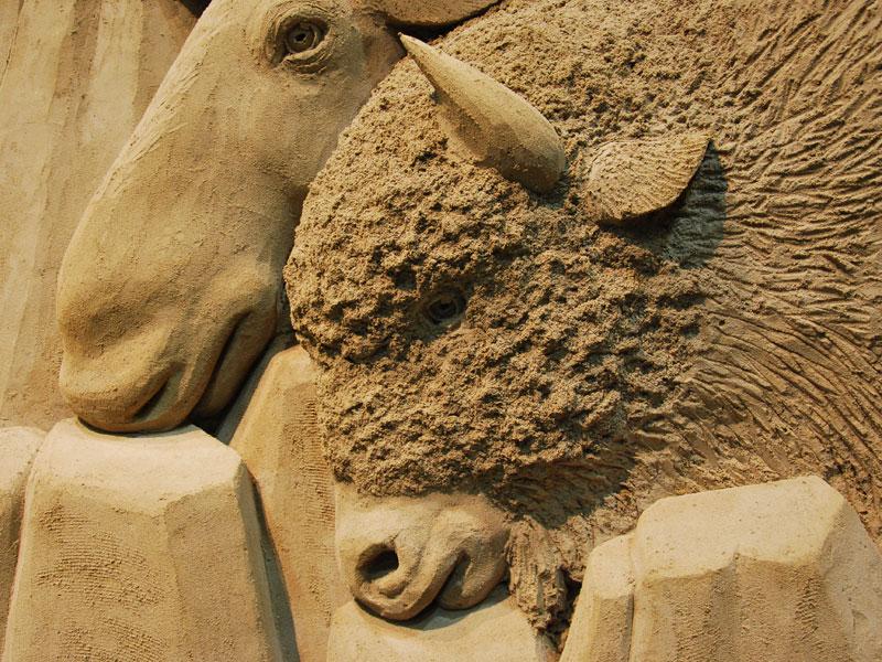 tottori-dans-museum-bull