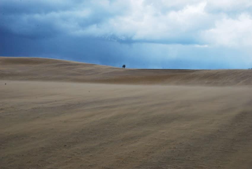 tottori-dunes-sommet-vent