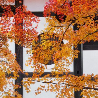 Kyoto 2017 – Tofuku-ji