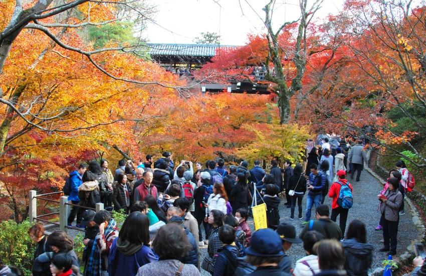 kyoto-2017-tofukuji