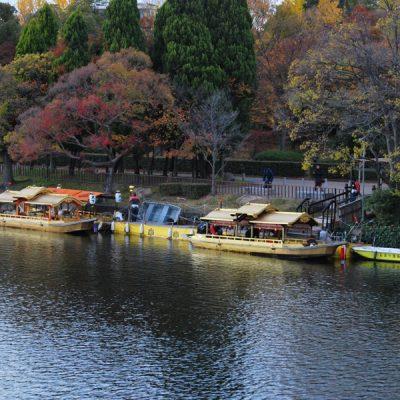 Osaka 2017 – Petit tour au Château