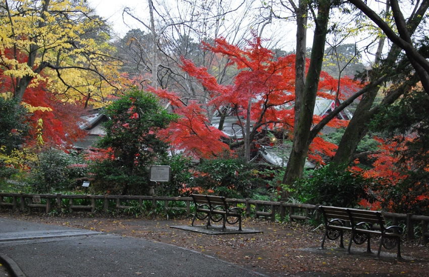 tokyo-2017-parc-inokashira