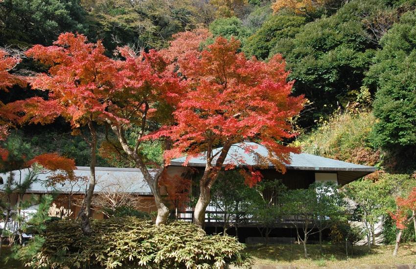 temple-engakuji-kamakura-2017