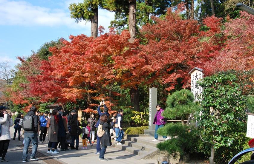 temple-engakuji-entree-kamakura-2017