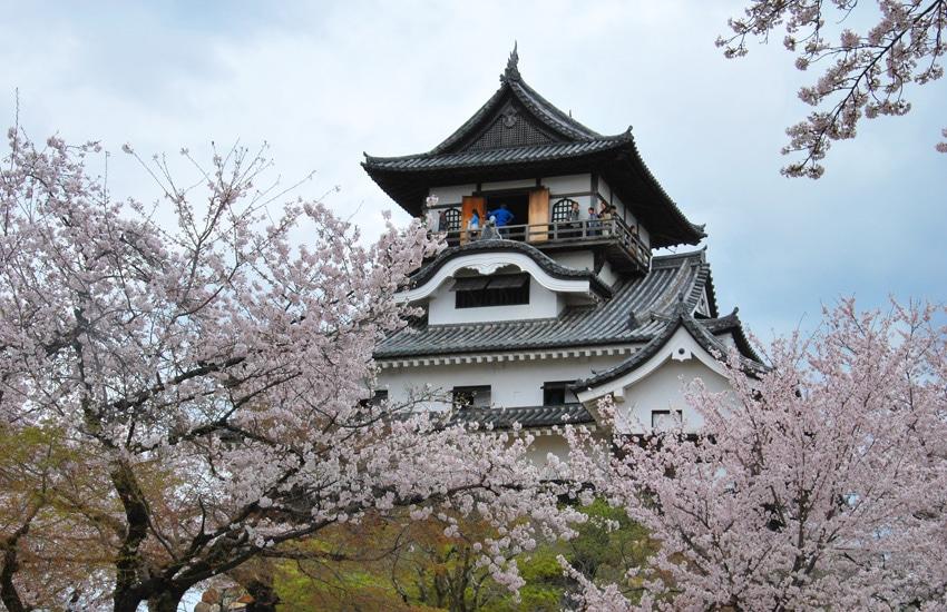 inuyama-2016-chateau