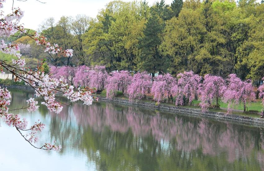 nagoya-2016-chateau-jardin