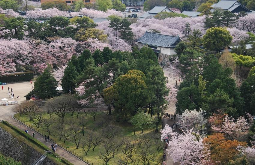nagoya-2016-chateau-vue