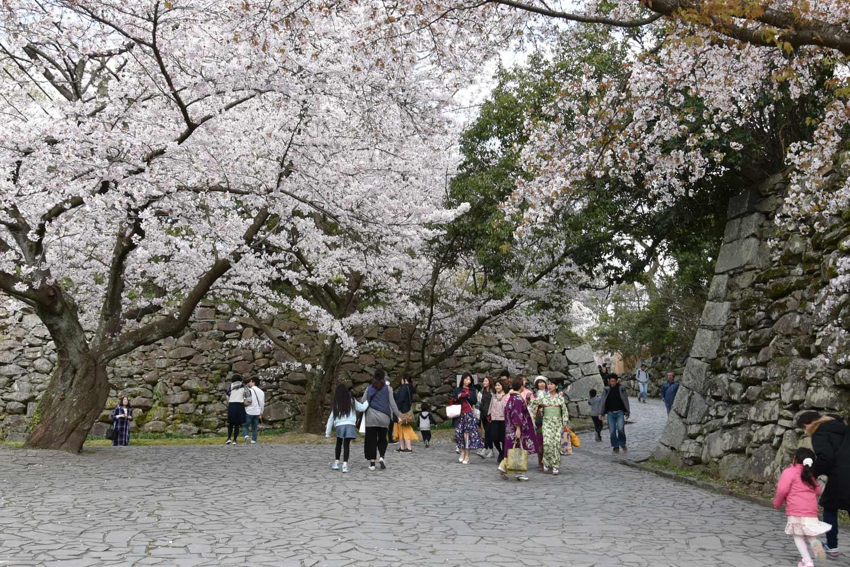 fukuoka 2019 maizuru-park-1