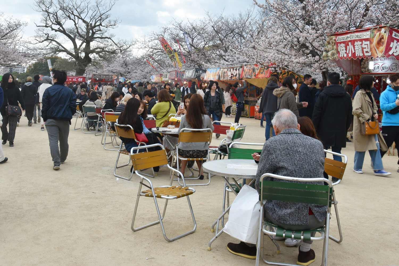 fukuoka 2019-maizuru-park-10