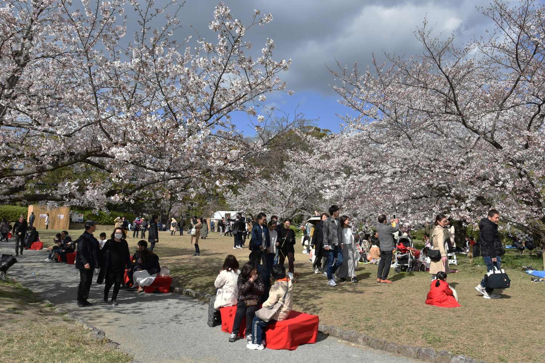 fukuoka 2019 maizuru-park-3