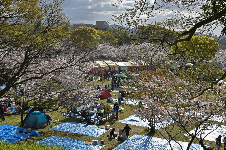 fukuoka 2019 maizuru-park-8