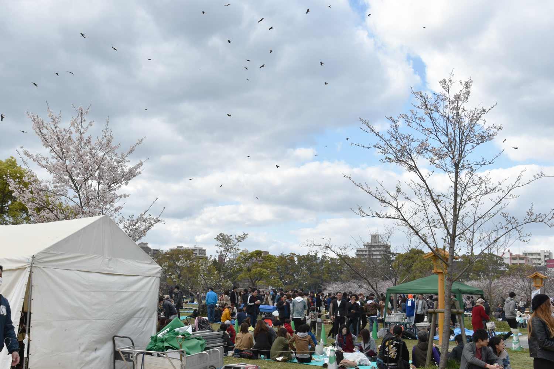 fukuoka 2019 maizuru-park-9