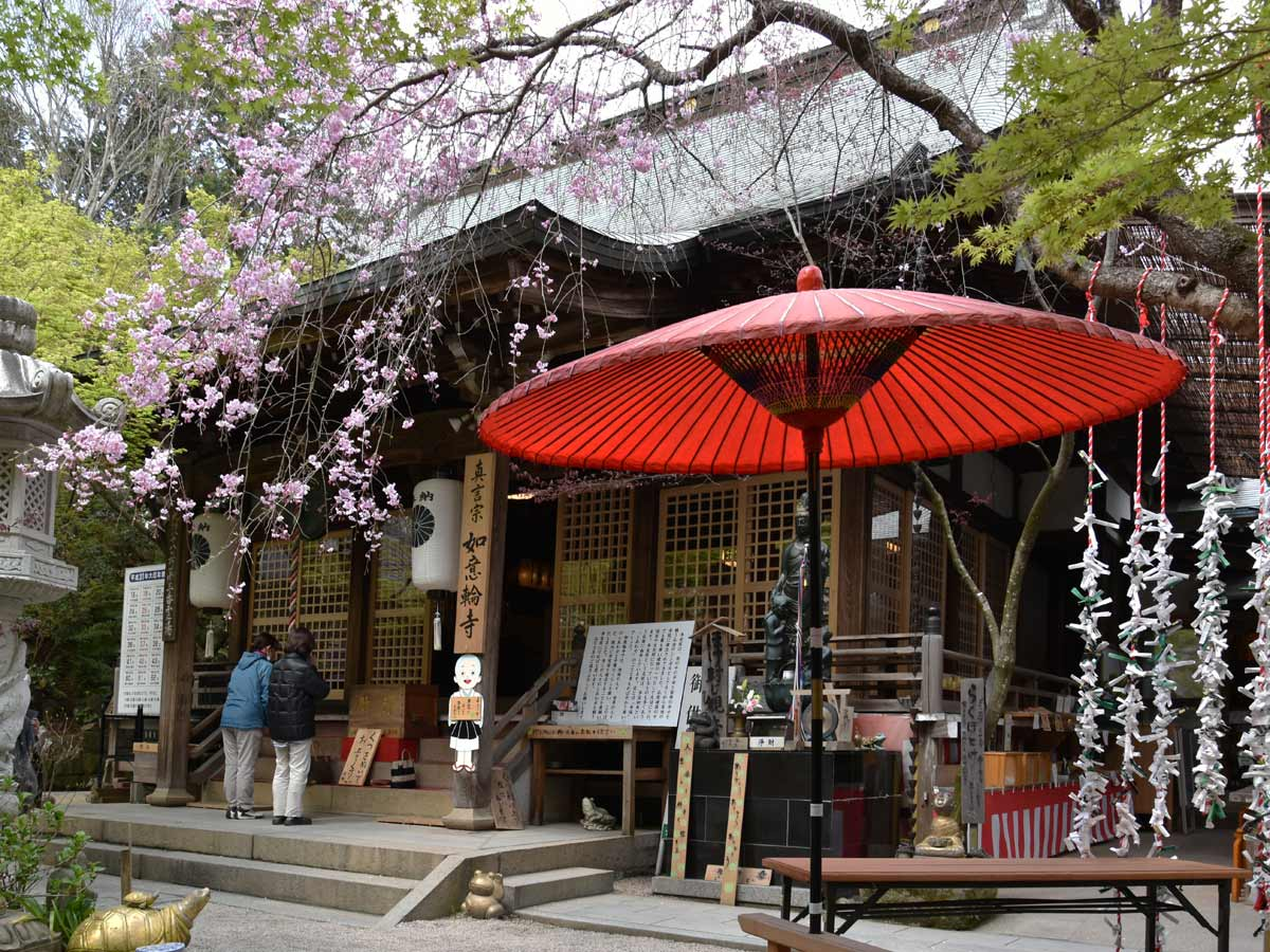Fukuoka 2019 – Dazaifu Tenmangu, Kaeru Dera et Maizuru Park