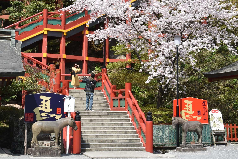 fukuoka-2019-yutoku-inari-nadeuma