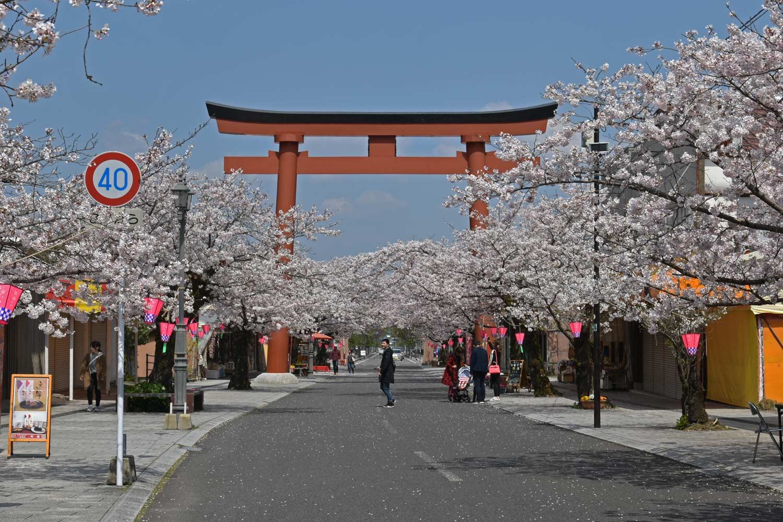 fukuoka-2019-yutoku-inari-torii-rue-commercante