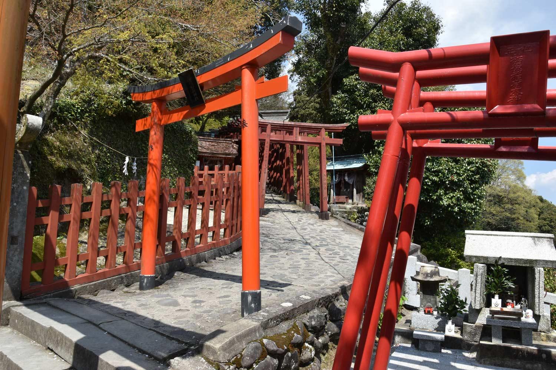 fukuoka-2019-yutoku-inari-torii-tunnel-1