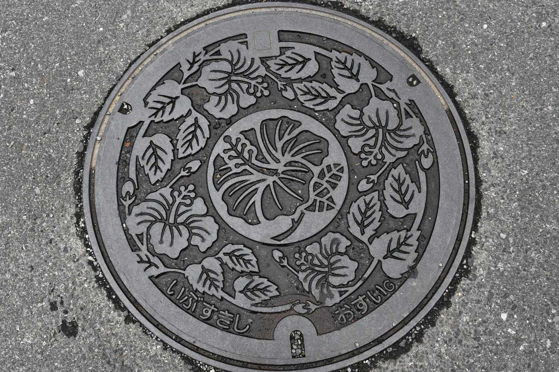 ibusuki-2019-plaque