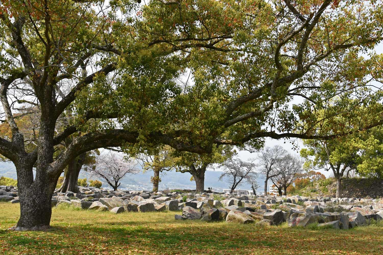 kumamoto-2019-chateau-jardin-des-pierres-numerotees