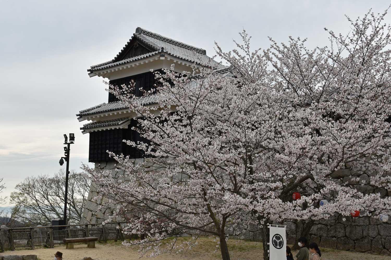 Matsuyama-2019-1-chateau-1