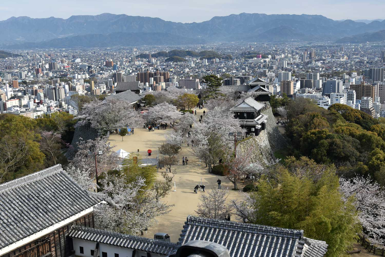 Matsuyama-2019-1-chateau-7