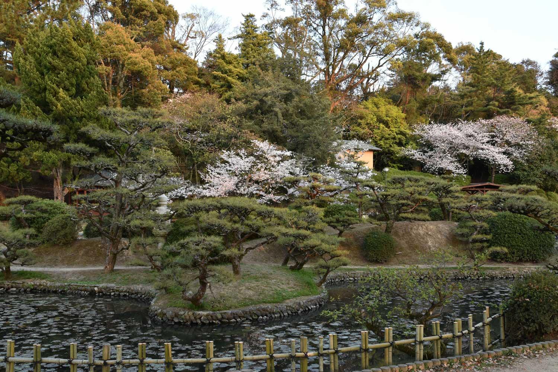 Matsuyama-2019-1-dogo-park-2