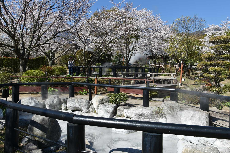 beppu-2019-oniishibozu-jigoku-premier-bassin-2