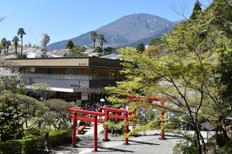 beppu-2019-umi-jigoku-6