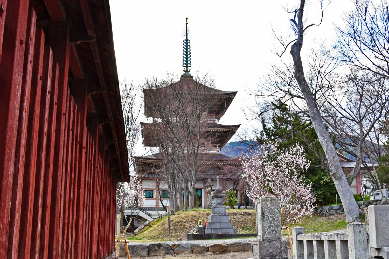 nagano-2019-temple-zenkoji-arriere-pagode