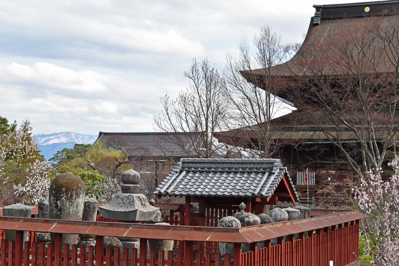 nagano-2019-temple-zenkoji-arriere-vue-montagne