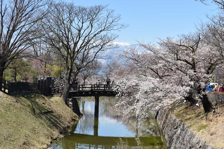 matsumoto-2019-chateau-nord-est