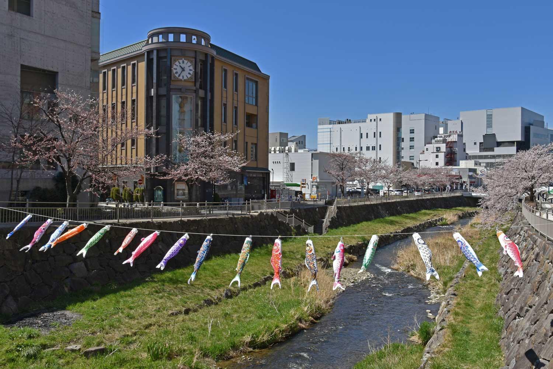 matsumoto-2019-sensai-bridge.koi-2