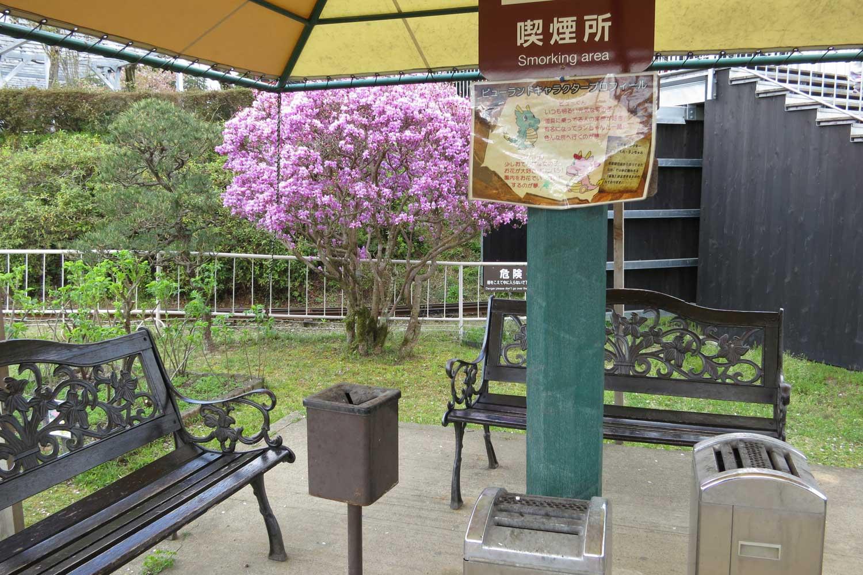 amanohashidate-2016-viewland-smoking-area