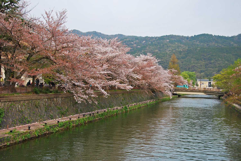 kyoto-2016-heian-jingu-canal-okasaki