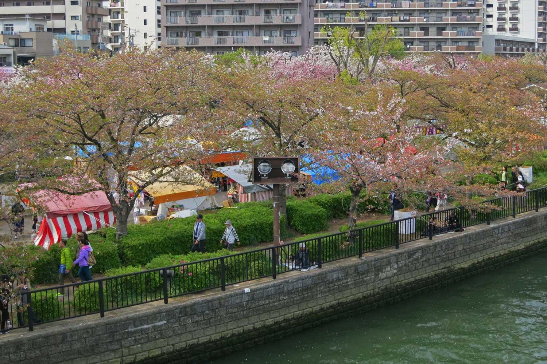osaka-2016-cerisiers-mint-museum-stands-4