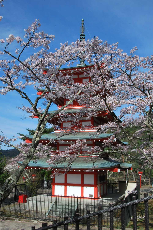 kawaguchiko-2016-fuji-chureito-pagode