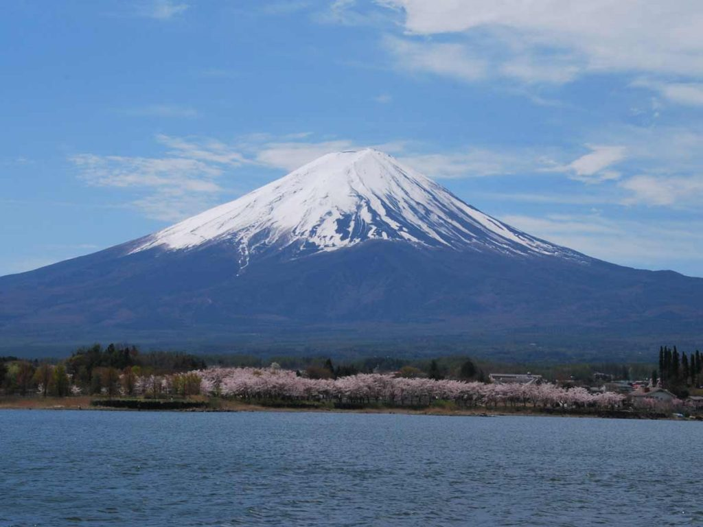 kawaguchiko-2016-lac-bateau-fuji-cerisier