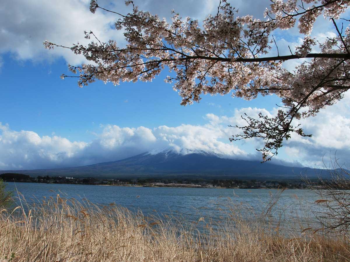 Arrivée à Kawaguchiko 2016 – Première rencontre avec le Mont Fuji