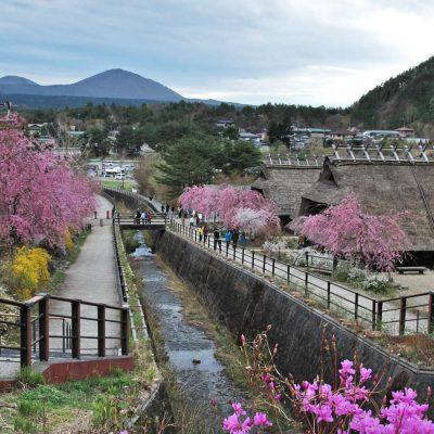 Kawaguchiko 2016 – Balade au village Iyashi no Sato sur le lac Saiko